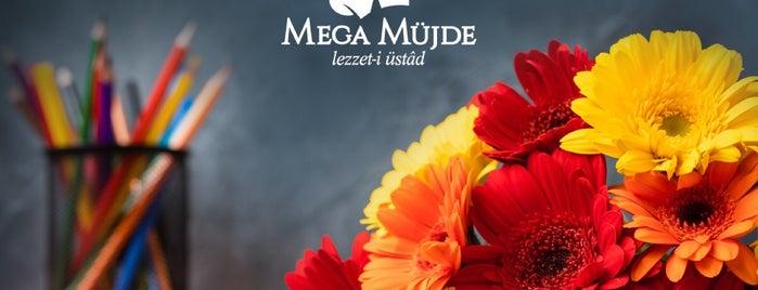 Mega Müjde is one of Lieux qui ont plu à Güler.