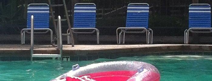 Woodmoor Pool is one of #YouBelongHere.
