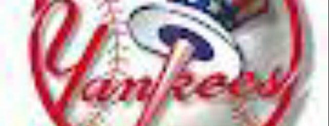 Yankees Baseball! is one of Baseball.