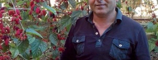 Devgan Orman Urunleri is one of Posti che sono piaciuti a Yılmaz.