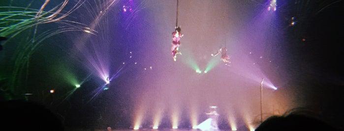 Cirque du Soleil Amaluna is one of Marisa'nın Beğendiği Mekanlar.