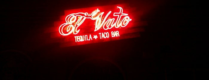 El Vato Tequila And Taco Bar is one of Been there and did the damn thing!.