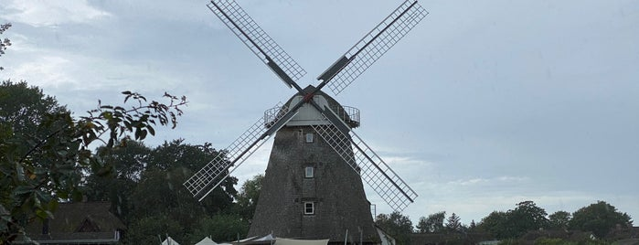 Mühle Ahrenshoop is one of Davidさんのお気に入りスポット.
