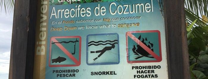Parque Nacional de Arrecifes Cozumel is one of Fin en Cozumel.