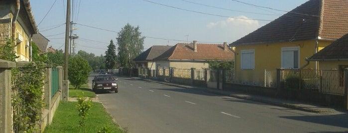 Sajóvámos is one of Orte, die Adam gefallen.