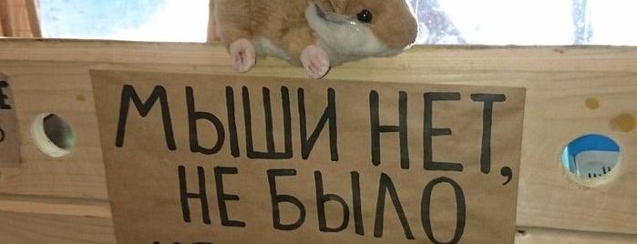 Свинья и мышь is one of Mikhail: сохраненные места.