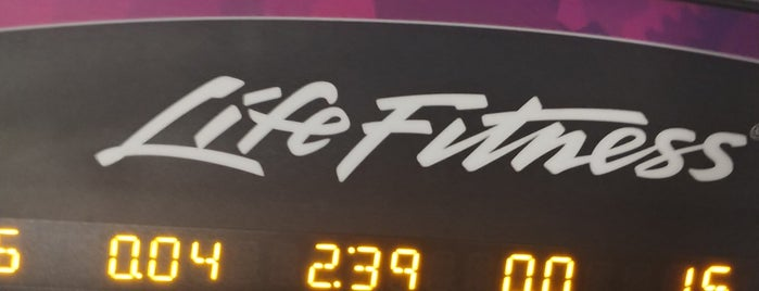 Planet Fitness is one of good.