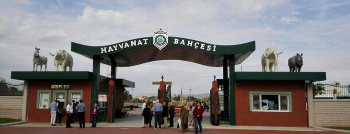 Eskişehir Hayvanat Bahçesi is one of Locais curtidos por Selin.