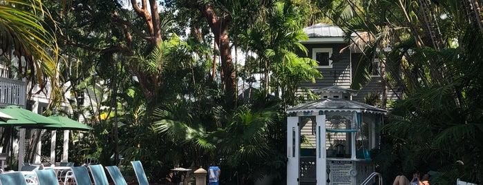 Ambrosia  Key West is one of Posti che sono piaciuti a Vanessa.