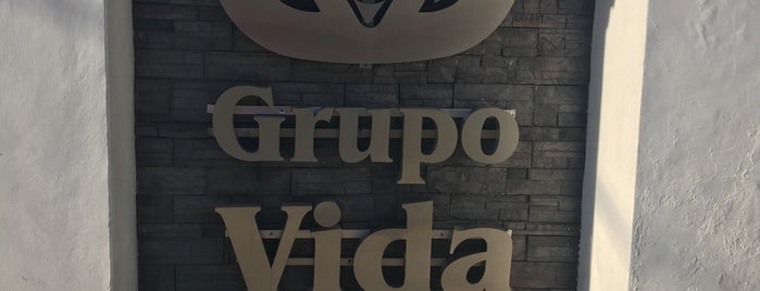Grupo Vida is one of Sergio M. 🇲🇽🇧🇷🇱🇷 님이 좋아한 장소.