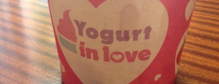 Yogurt in love is one of Everything.