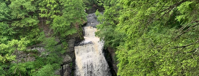 Bushkill Falls, Pa is one of Lieux qui ont plu à Maddie.