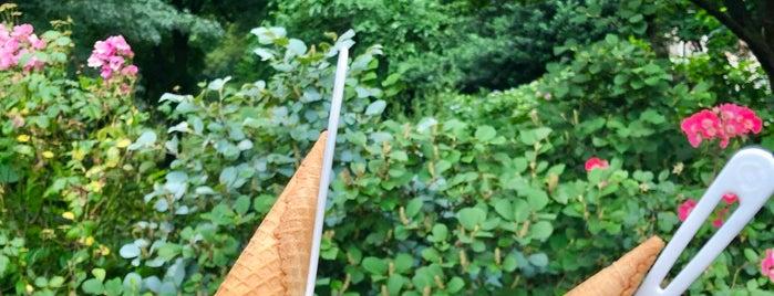 Van Leeuwen Artisan Ice Cream is one of Tempat yang Disukai Will.