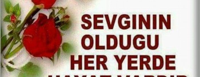 Manisa T Tipi Kapalı Cezaevi is one of MEHMET YUSUF : понравившиеся места.