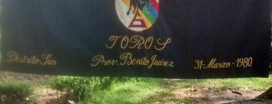 """Grupo 6 """" Toros"""" is one of Por corregir."""