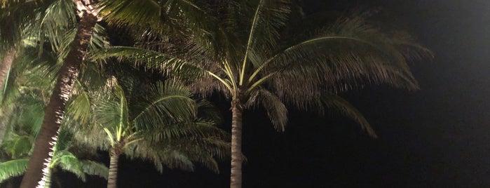 Mia Resort Mui Ne Beach is one of Nedy Lutfi's Liked Places.