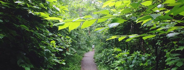 Frick Park is one of A State-by-State Guide to America's Best Parks.