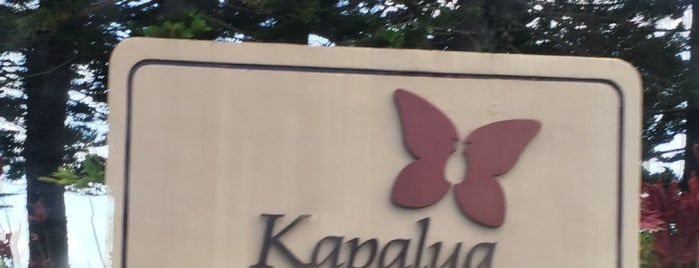 Kapalua Village Center is one of My Fave places.