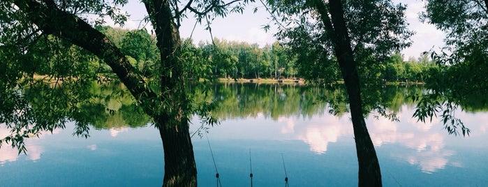 Река Сосенка is one of Tempat yang Disukai ŚkⒶℳÂℕ 🎿⛷🇷🇺🇩🇪 (͡๏̯͡๏).