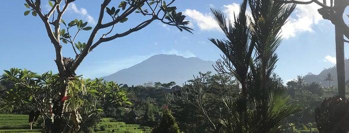 Sawah Indah Villas is one of Bali.