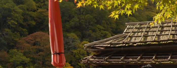 Arashiyama Park is one of Kyoto.