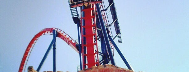 SheiKra is one of Tampa.