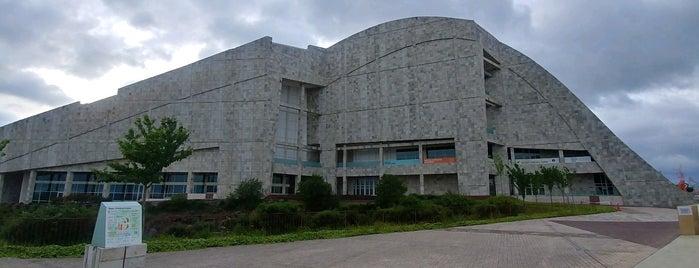 Museo da Cidade da Cultura is one of Tempat yang Disukai Miguel.