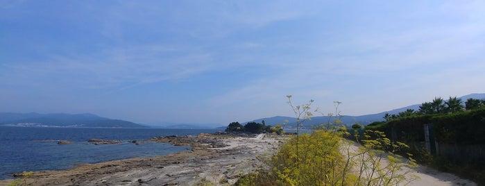 Praia da Aguieira is one of Orte, die Adrián gefallen.