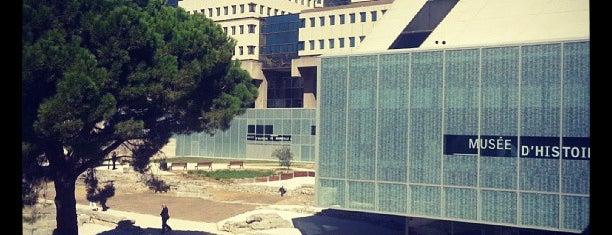 Musée d'Histoire de Marseille is one of MRS.