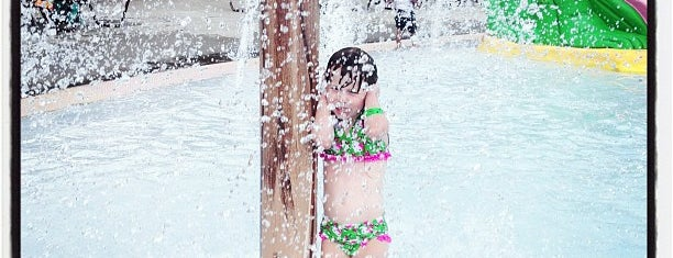 Great Wolf Lodge is one of Best U.S. water parks.
