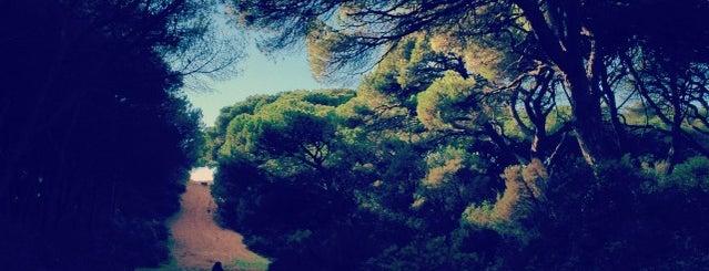Zona Verde is one of Lx museus e jardins gratis.