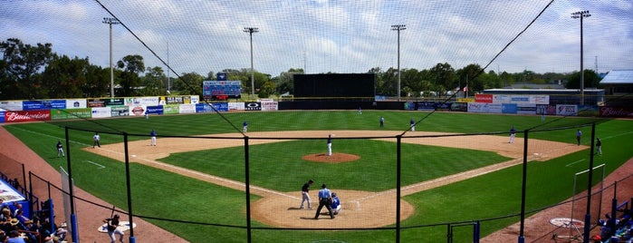 Dunedin Stadium is one of Livin' Large Summer.