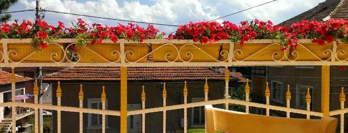 Hotel Aura is one of Locais curtidos por Martin.