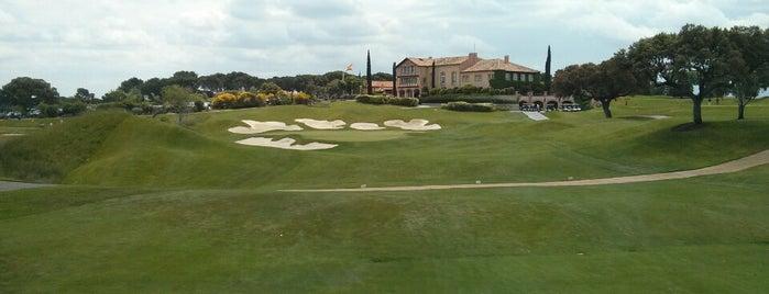 Golfus