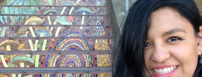 Hidden Garden Mosaic Steps is one of san fo.