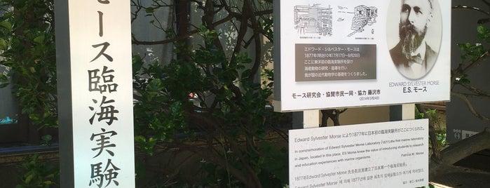江の島 モース臨海実験所跡推定地 is one of 記念碑.
