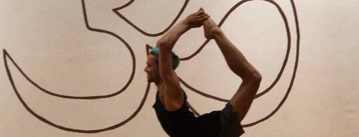 Yoga Kendra is one of สถานที่ที่ Molly ถูกใจ.
