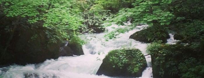 奥入瀬渓流 阿修羅の流れ is one of Aomori/青森.