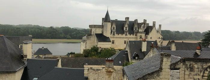 Château de Montsoreau is one of 100 km 2020.