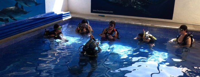 Dive Encounters is one of Locais salvos de Armando.