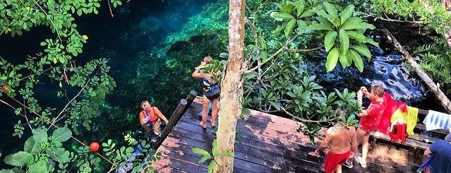Gran Cenote is one of Sitios Internacionales.