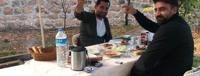 Havuz Başı Restaurant is one of Serdar Gultekin : понравившиеся места.