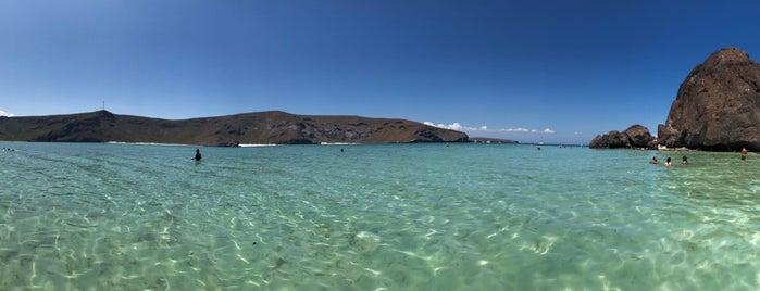 Playa Balandra is one of สถานที่ที่ Ana ถูกใจ.