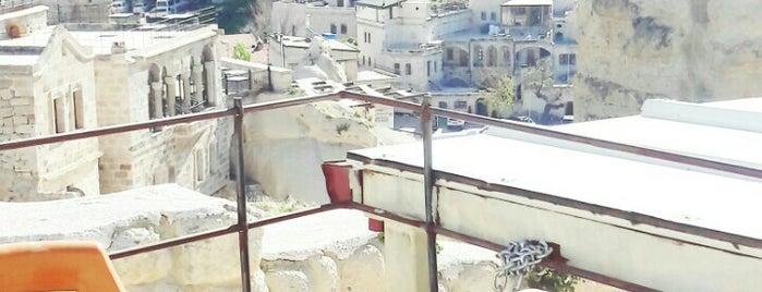 สถานที่ที่ gültanesii ถูกใจ