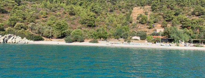 Mazı Koyu is one of 7. ÖLÜDENİZ SAHİL.