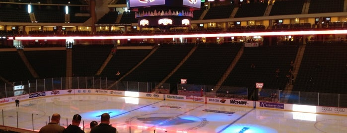 Xcel Energy Center is one of US Pro Sports Stadiums - ALL.