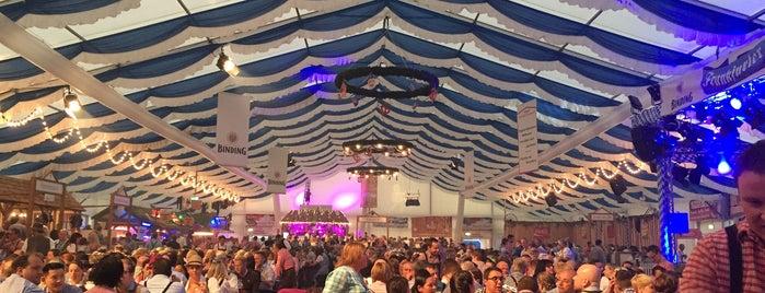 Frankfurter Oktoberfest is one of Hotspots Hessen | Bier.
