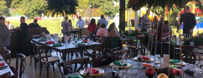 terraza kayoli is one of Lieux qui ont plu à Maya.