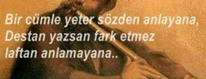 Meşhur Söğüşcü Coşar Usta is one of Ölümüne yemek.