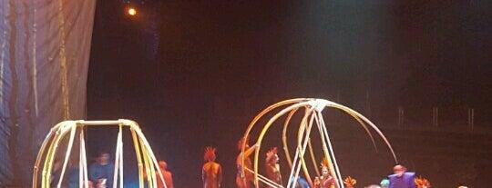 Cirque Du Soleil | VAREKAİ is one of Büşra Nazlanさんのお気に入りスポット.